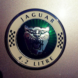 #jaguar _Taking bookings from 7th June _www.northvaleting.co