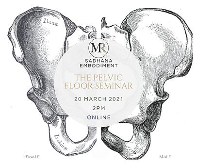 Pelvic Floor Seminar Mar 2021.png