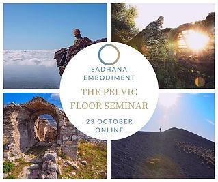 Pelvic Floor Seminar Oct 2020.jpg