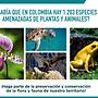 Conservacion_Fauna_Flora.png