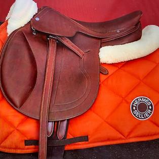 Pferde Decke Loden Tuchweberey Buchner
