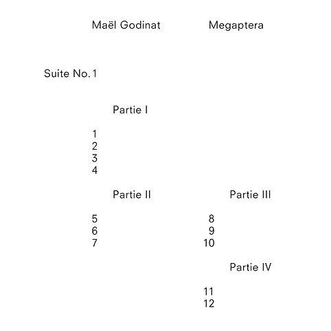 Mael Godinat Megaptera | Visuel Nicola Todeschini