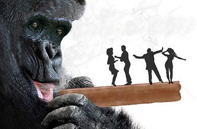 bonobo-pic2.jpg