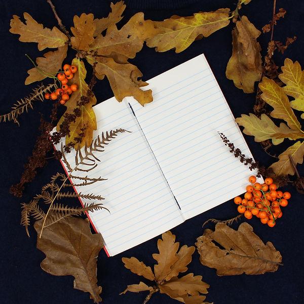 Autumn Photoset I