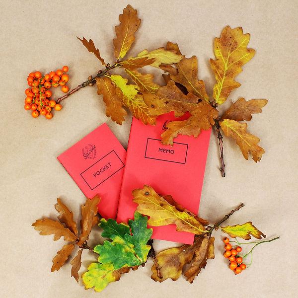 Autumn Photoset II