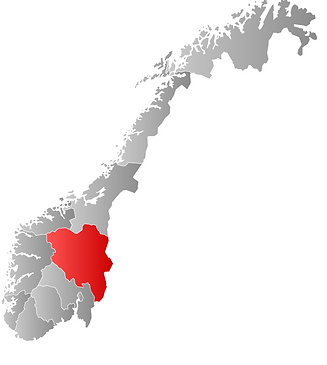 innlandet portmester.png
