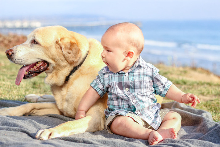 a baby boy and his dog at the beach in Pacific Beach in San Diego