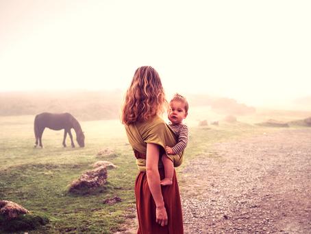 Kindererziehung ist auch nichts anderes als Pferdetraining?!