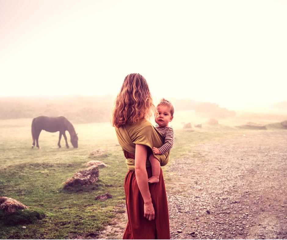 Attachment Parenting Beziehung mit Pferden