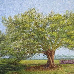 Carol's Tree