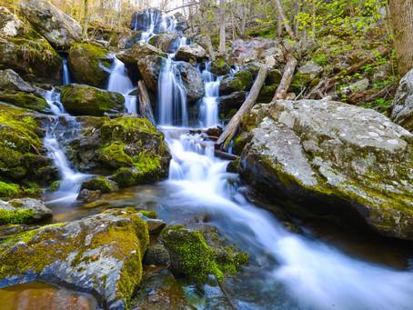 Three Great Reasons to Visit the Shenandoah National Park