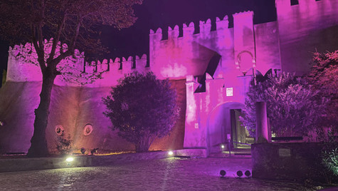 castello rosa int_fa.jpg
