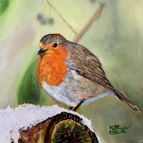 Irish Robin