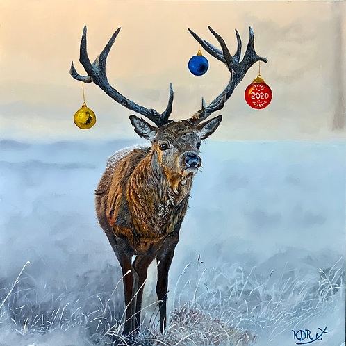 Red Deer Stag dressed for the Holidays.