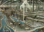 food processing plant.jpg