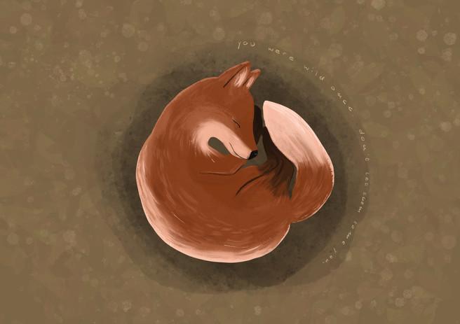 Illustration –Fuchs