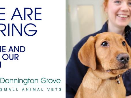 Trainee Veterinary Nurse Vacancy - Position closed