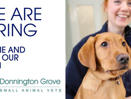 Trainee Veterinary Nurse Vacancy