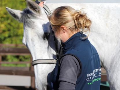 Vacancy - Equine Veterinary Nurse