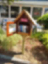 littlefreelibrarymaplestreet.jpg