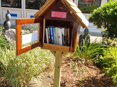 Little Libraries On The Trail