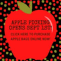 Apple Picking Sept 1 (1).png