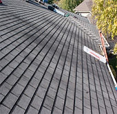 Aspen Roofing Services, Inc.