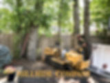 Stump Grinding/Stump Removal