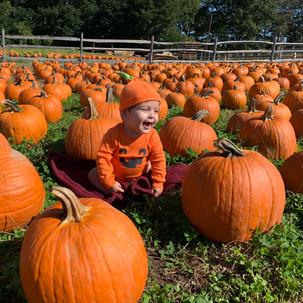 CaidenPumpkin2.jpeg