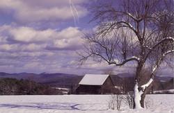 Beautiful Winters