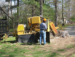 Hillside Stump Grinding