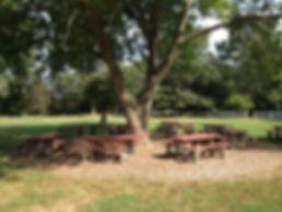 Friends of Endicott Park
