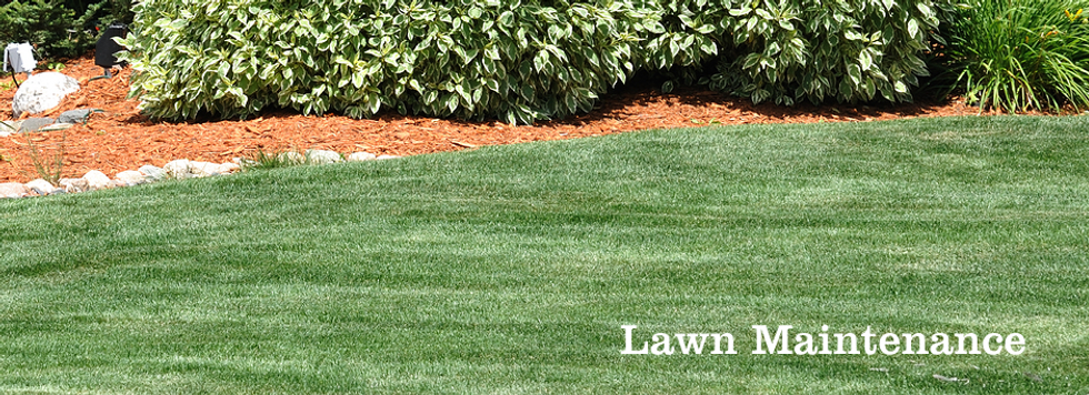 Conway Landscaping Services