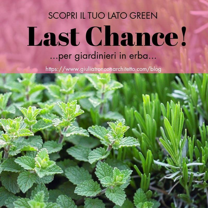 LAST CHANCHE!...per giardinieri in erba...scopri il tuo lato Green