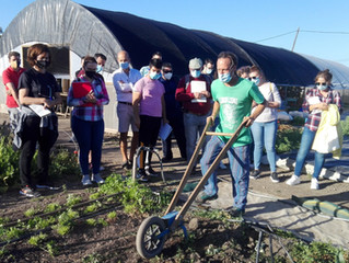 Gran participación del alumnado en la visita a un huerto ecológico