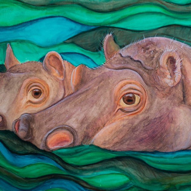 Hippopotamae