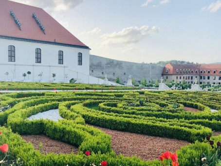 The best day trip from Vienna: 5 things you didn't know about Bratislava, Slovakia
