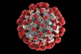 coronavirus-2_clipped_rev_1.png