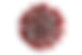 coronavirus-2_clipped_rev_1.png