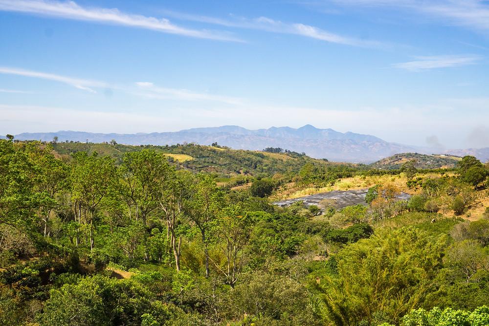 Alajuela region, the location of Finca Las Lajas.