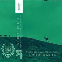 Dromedaries.jpg