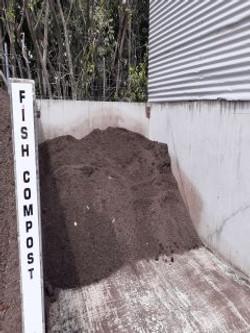Fish compost 1