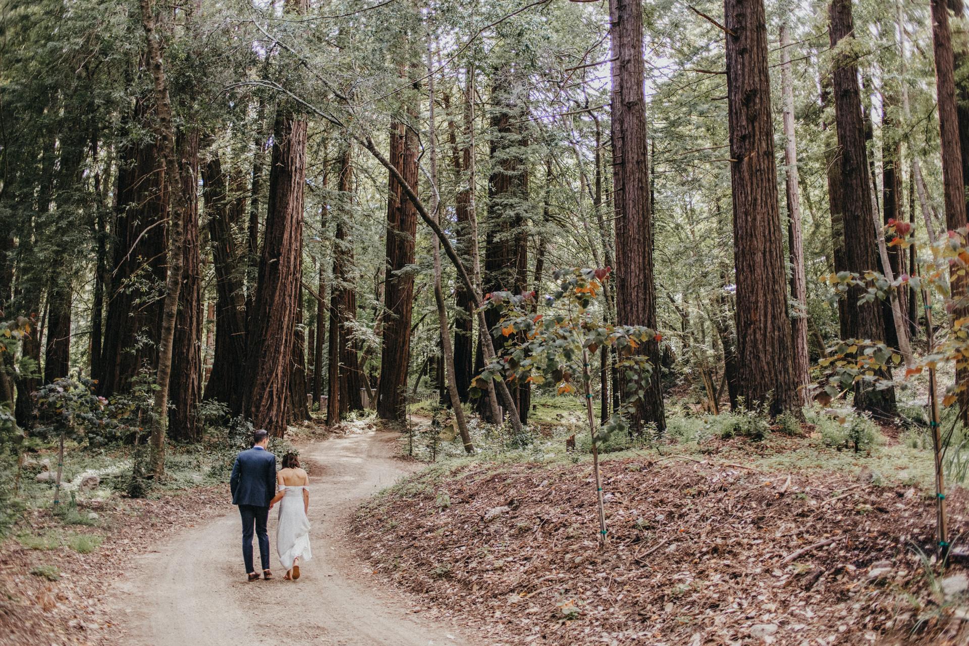 redwoods big sur wedding elopement