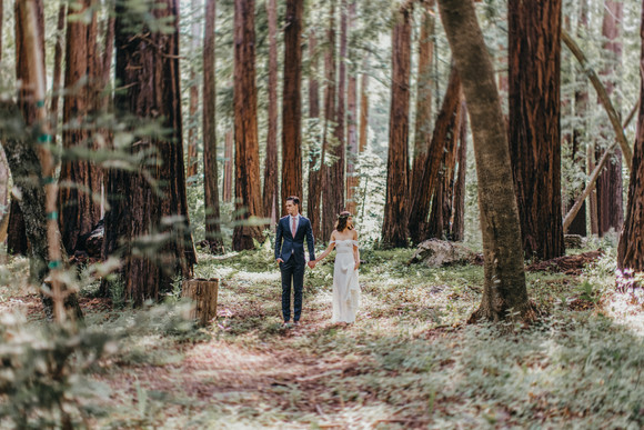 big sur redwoods wedding photography bride and groom in forest