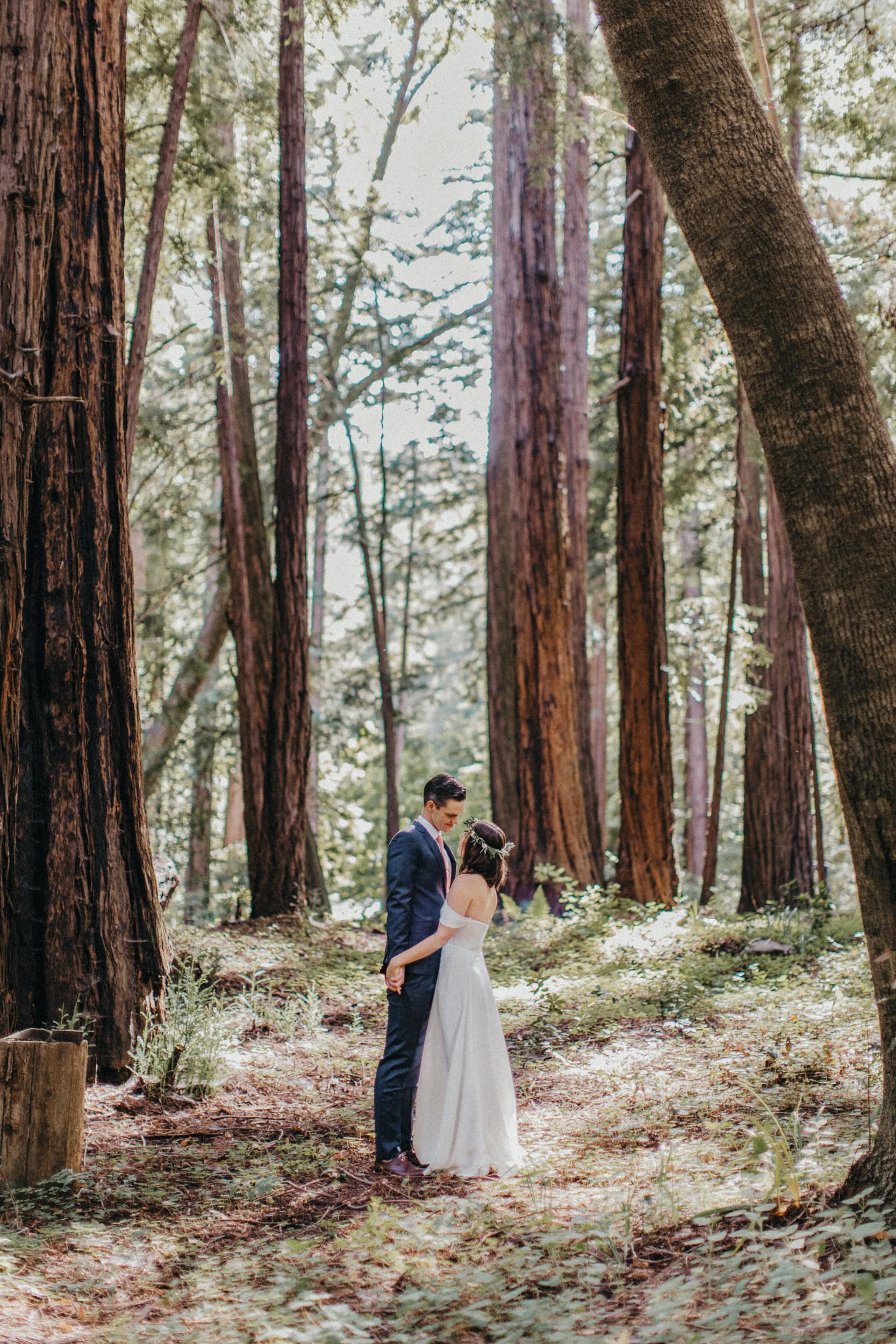 california redwood elopment photographer