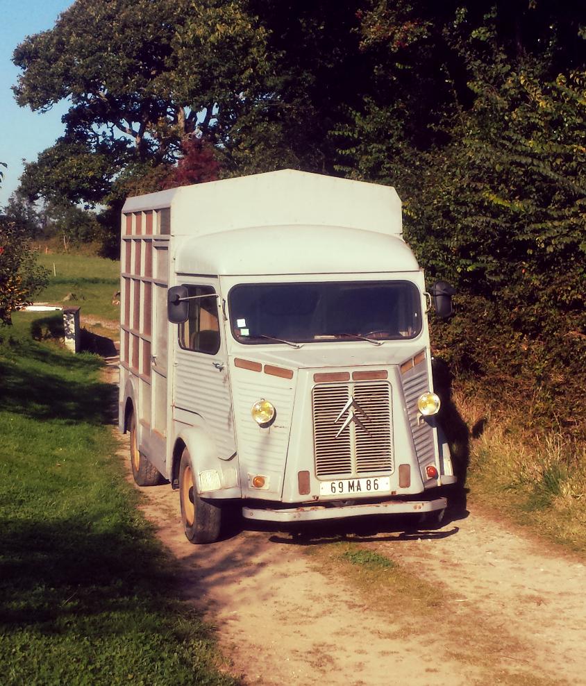 Wild Food Catering Cornwall HY van
