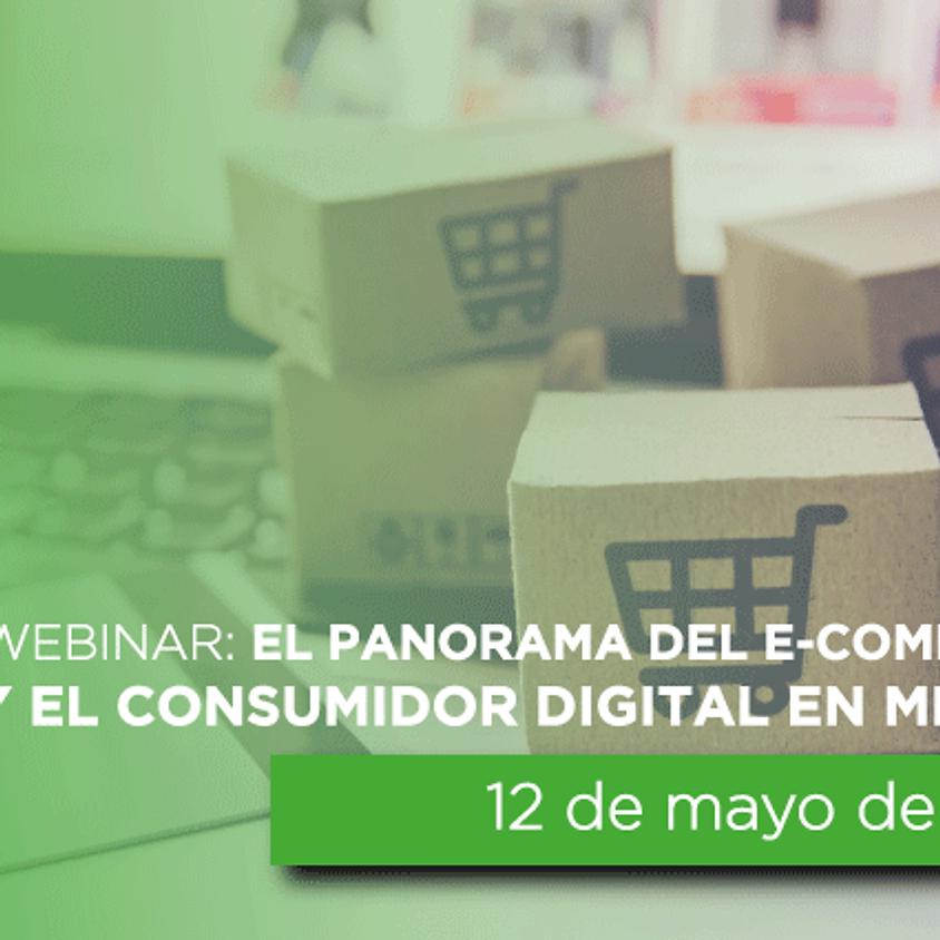 Webinar: El panorama del E-commerce y el Consumidor Digital en México.