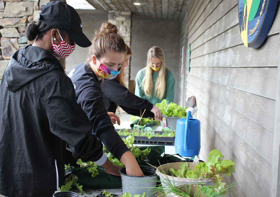 """W.A.M.Y. Interns fill """"Grow Bags"""" with edible lettuce, kale, chives and nasturtiums"""