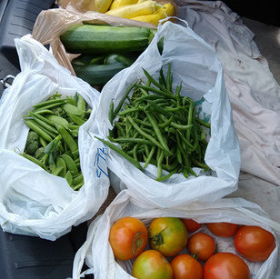 WAMY weekly produce.jpg