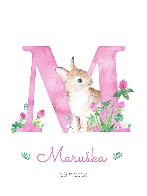 plakát s písmenkem a zajíčkem